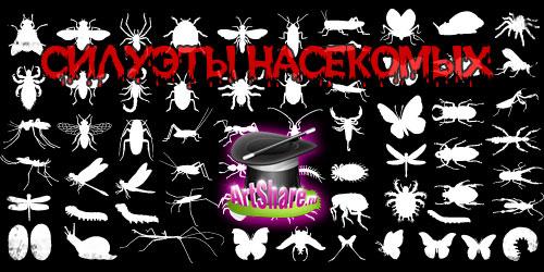Векторные насекомых