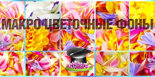 Фотки цветов